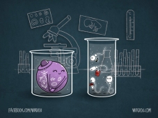 in vitro love