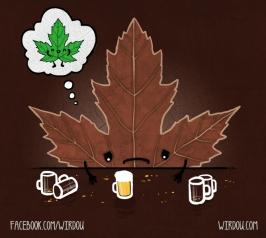 science, fun, funny, curious, desig, drawing, illustration, scientist, chemistry, biology, cute, ciencia, gracioso, divertido, científico, otoño, autumn, hoja, leaf