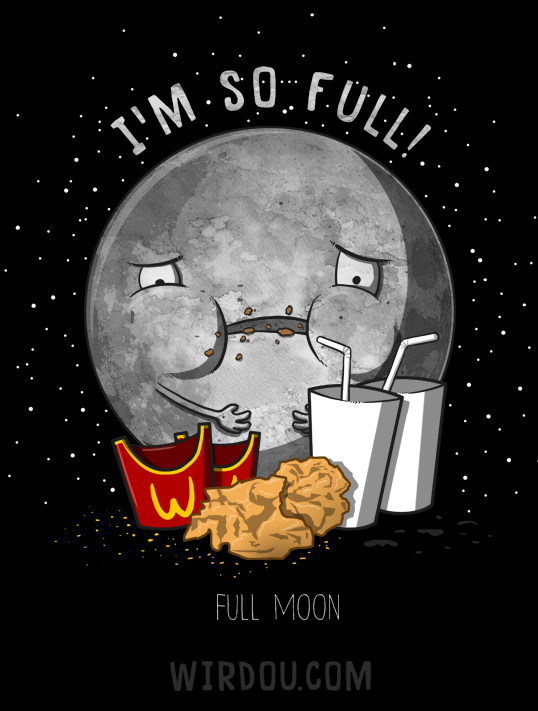 funny moon jokes and pictures moon myths funny jokes - 538×711