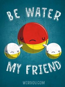 Be water my friend