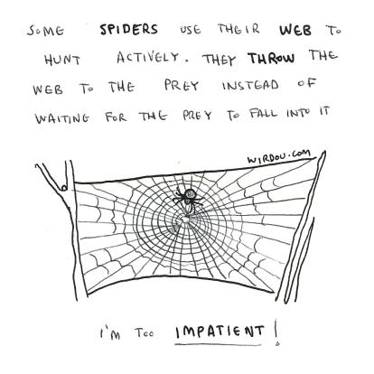 active-spiderweb