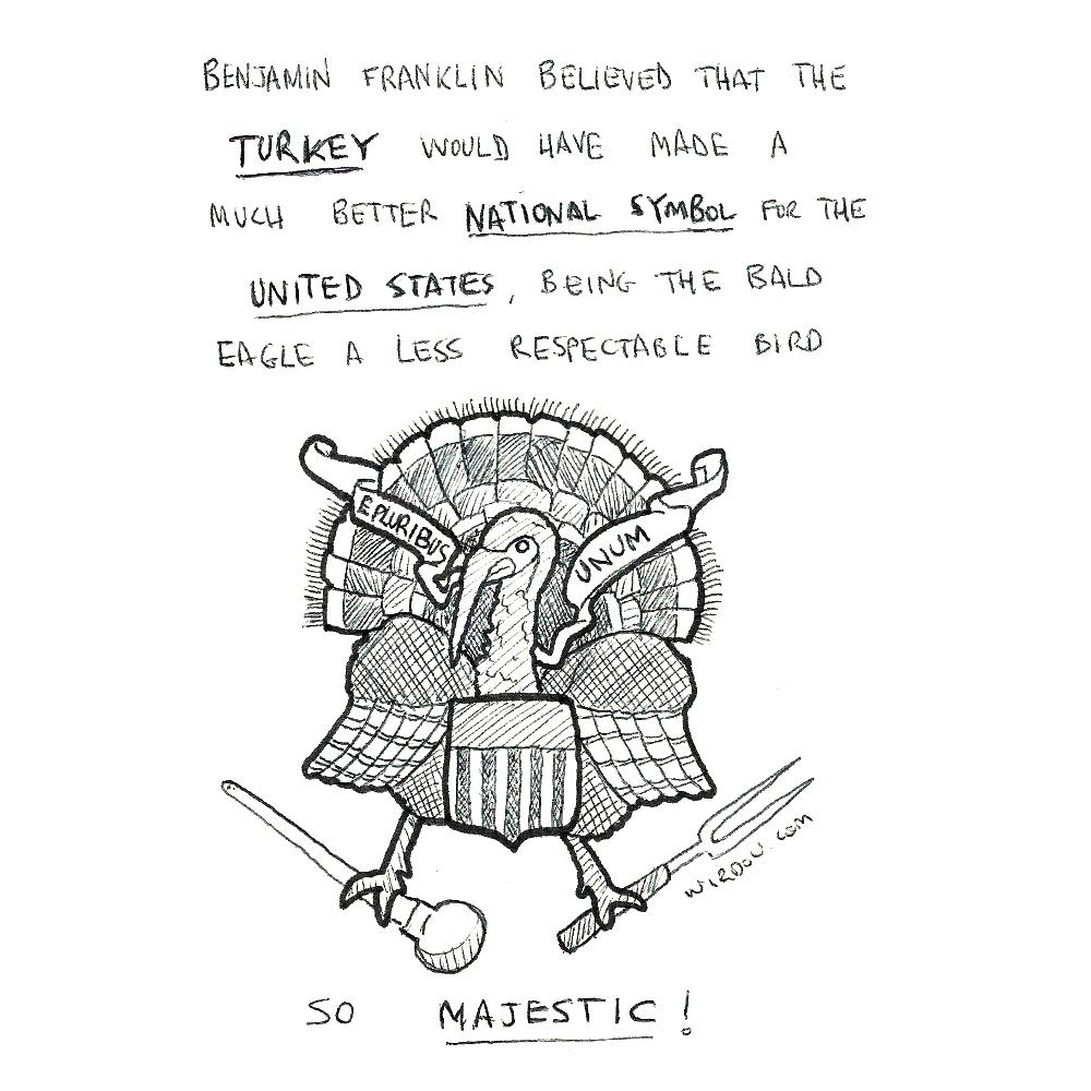 science, curious, curiosity, fun, funny, humor, turkey, thanksgiving, united states, benjamin franklin