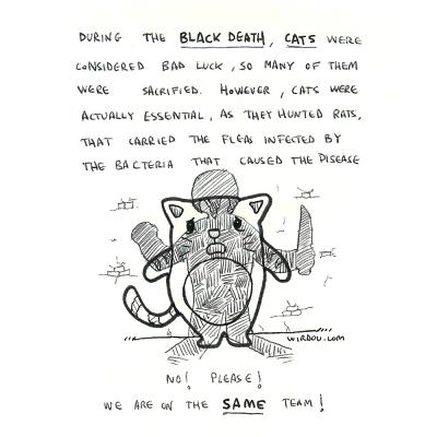 science, curious, curiosity, fun, funny, humor, cats, black death, rats, plague, medieval