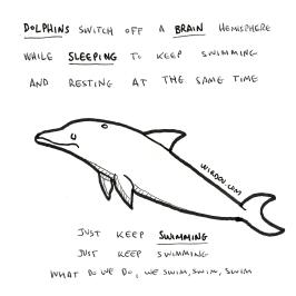 science, curious, curiosity, fun, funny, humor, dolphin, brain, hemispheres, sleep