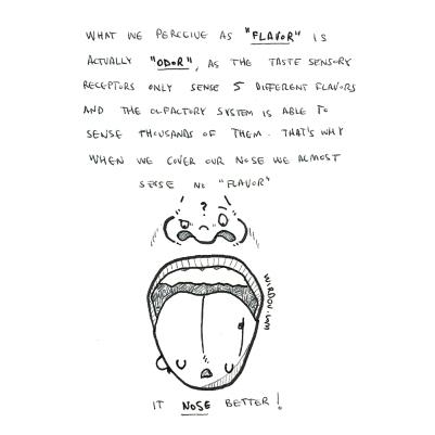 science, curious, curiosity, fun, funny, humor, tongue, flavor, odor, sensory