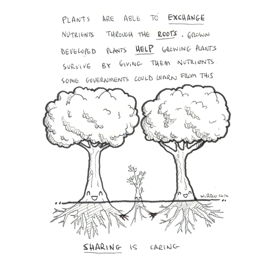 science, curious, curiosity, fun, funny, humor, plants, trees, sharing, roots, nutrients