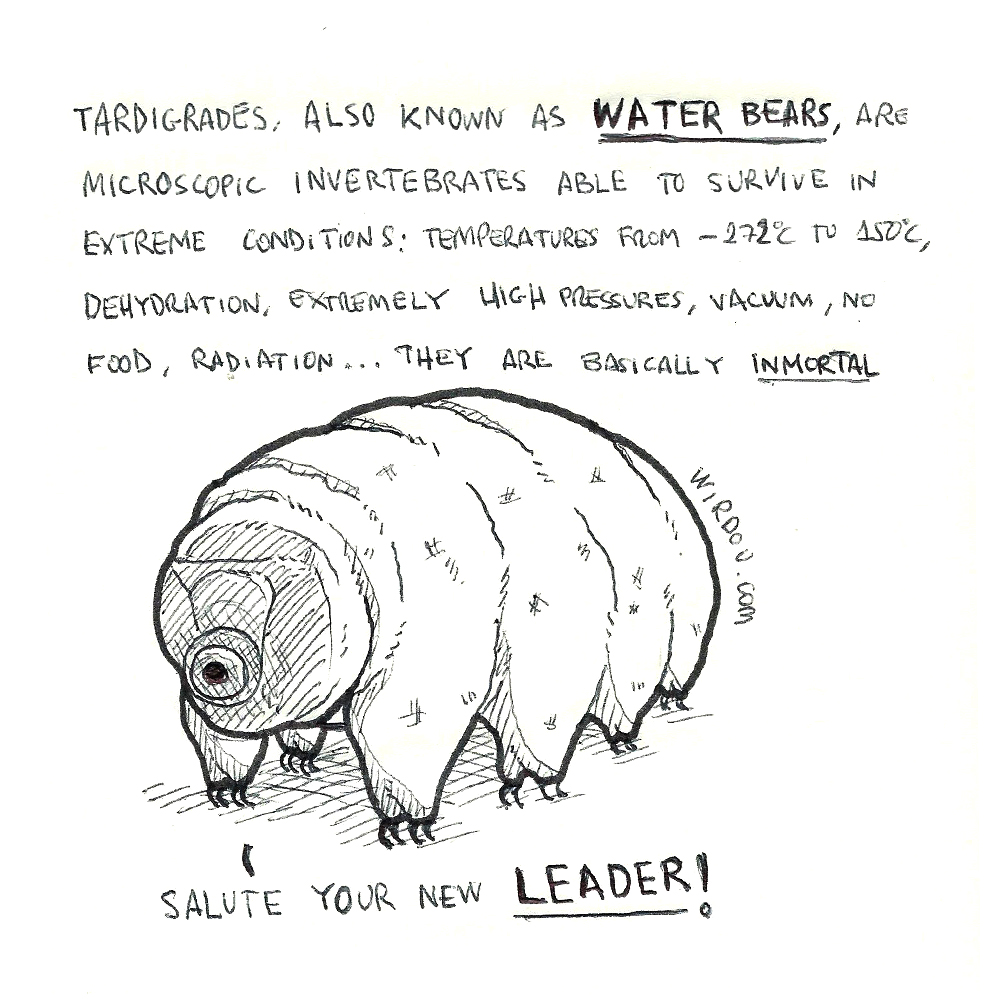 science, curious, curiosity, fun, funny, humor, water bear