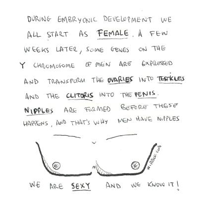 science, curious, curiosity, fun, funny, humor, nipples, development, clitoris, testicles, penis