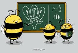 ciencia, humor, divertido, gracioso, science, fun, funny, abeja, polinización, bees, pollination, flor, planta, flower, plant