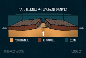 science, fun, funny, scientist, curiosity, curious, chemistry, biology, cute, design, illustration, drawing, geology, plate tectonics, lithosphere, continents, pagaea