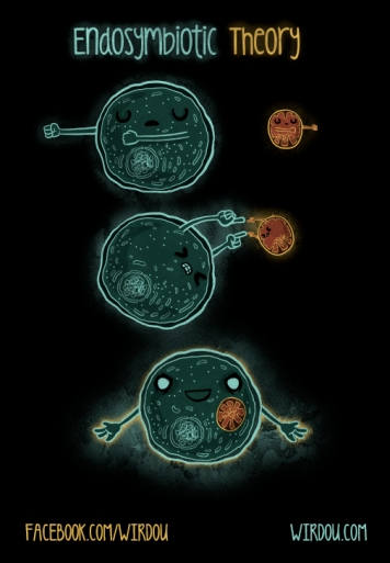 science, fun, funny, scientist, curiosity, curious, chemistry, biology, cute, design, illustration, drawing, dragon ball, cell, mitochondria