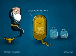 science, fun, funny, scientist, curiosity, curious, chemistry, biology, cute, design, illustration, drawing, darwin, cells, eukaryotic, evolution