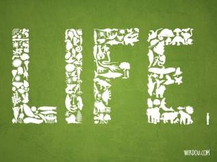 science, fun, funny, scientist, curiosity, curious, chemistry, biology, cute, design, illustration, drawing, ciencia, vida, history, life, paleozoic, cenozoic, mesozoic, paleontology, fossils, fósiles