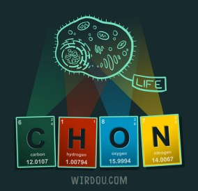 science, fun, funny, scientist, curiosity, curious, chemistry, biology, cute, design, illustration, drawing, life, evolution, vida, ciencia