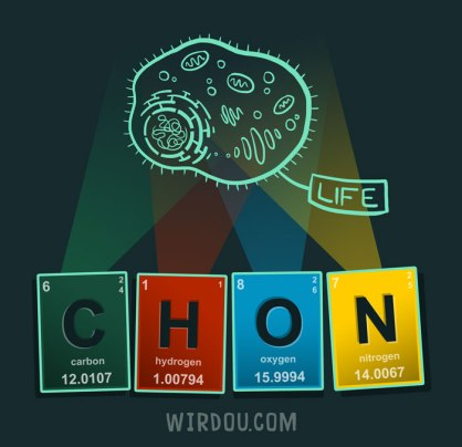 science, fun, funny, scientist, curiosity, curious, chemistry, biology, cute, design, illustration, drawing, life, evolution, vida, ciencia