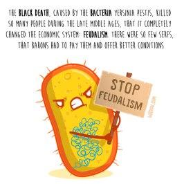 bacterias-feudalismo-inglés-para-web