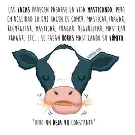 vacas-vómito-español-para-web