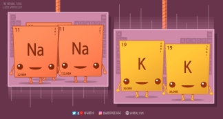 Web Sodium and Potassium