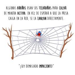 araña-lanzar-español-para-web