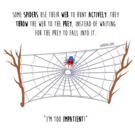 araña-lanzar-inglés-para-web