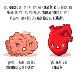 corazón-sonidos-español-para-web