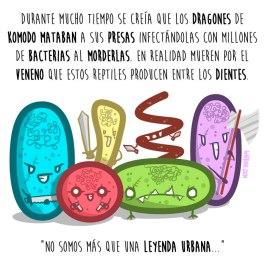 dragon-komodo-español-para-web