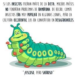 entomofagia-insectos-español-para-web