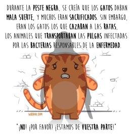 gatos-peste-español-para-web