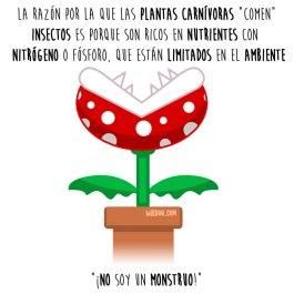 plantas-carnivoras-español-para-web