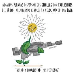 semillas-explosivas-español-para-web